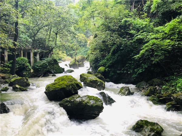 瀑布-流水绿树.jpg